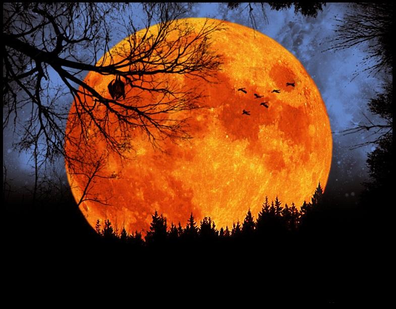 лунно затъмнение в лъв